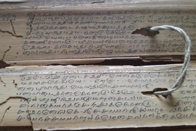 Palmblattbibliothek